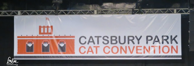 Catsbury Park Cat Convention|Cat cafe