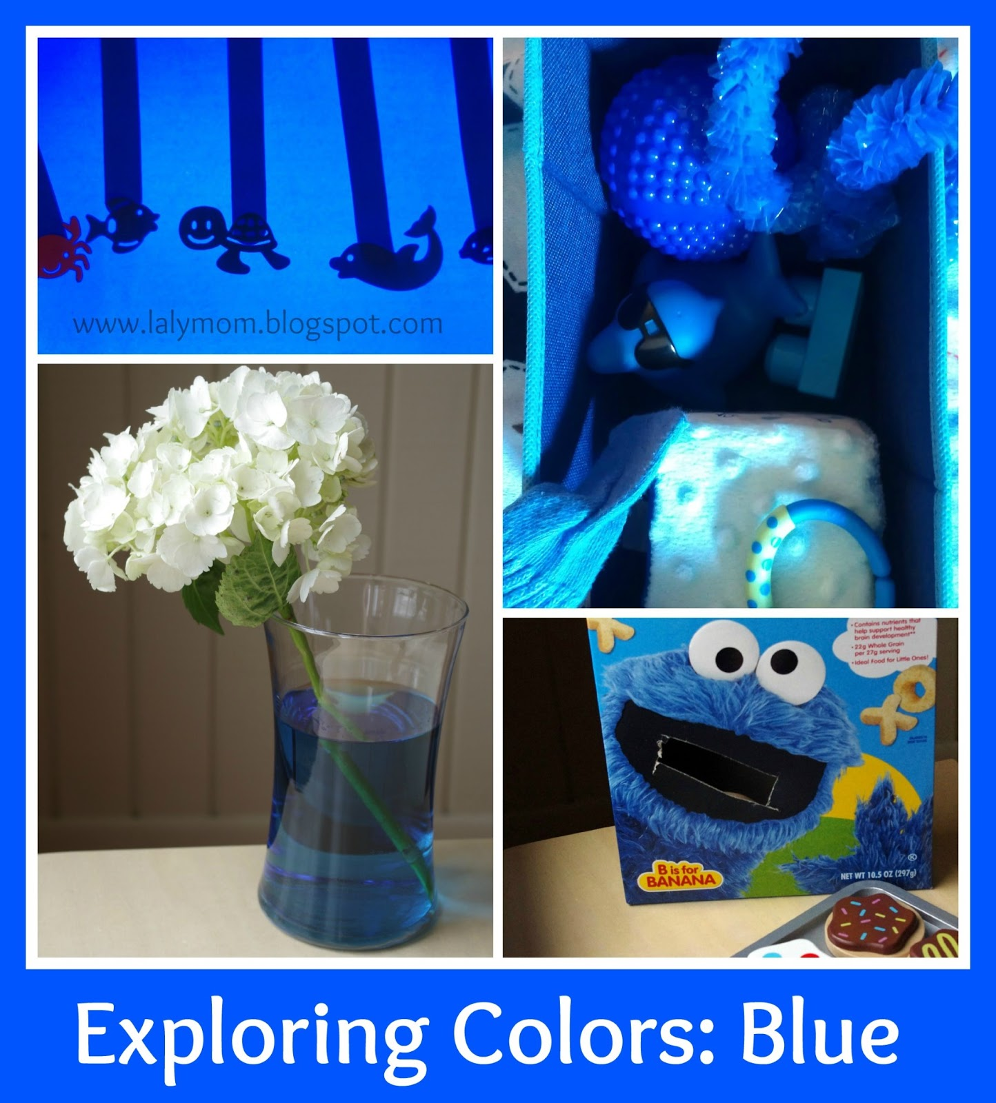 Exploring The Color Blue On Lalymom