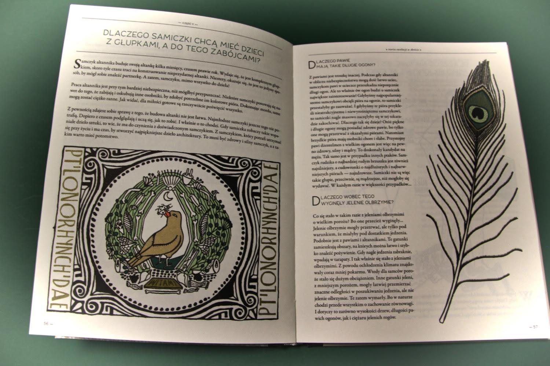 """""""Ewolucja. Zagadka życia na Ziemi"""" Jan Paul Schutten, Floor Rieder, Format"""