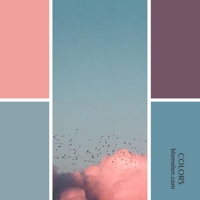 variedad_en_color_combinacion_18