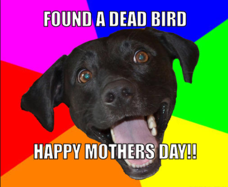 Mothers day 2018 Cool Memes