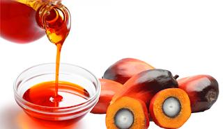 Image result for palm oil kernel