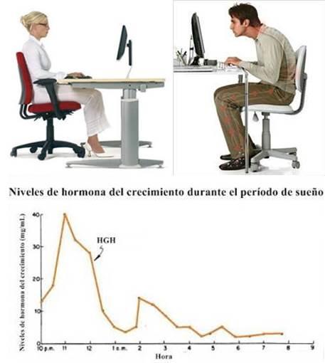 Trasnochar estando frente al monitor del ordenador altera la calidad de sueño y la secreción de hormona del crecimiento