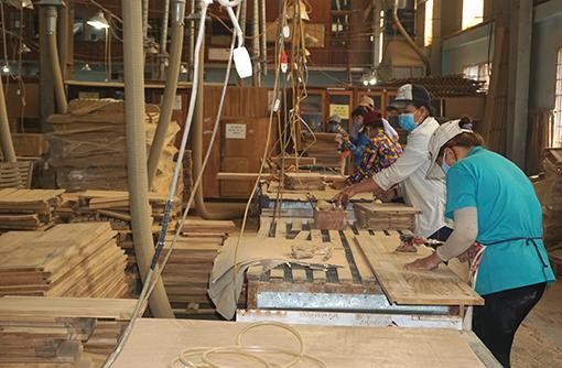 Giải pháp nào để mở rộng thị trường nội địa cho ngành gỗ?