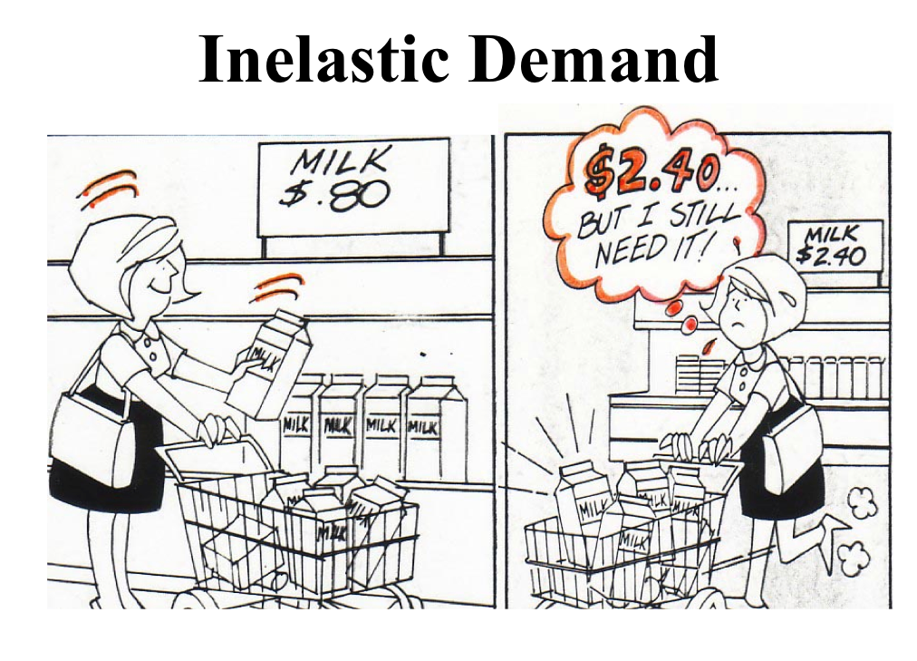 Economics Education: Elasticity of Demand