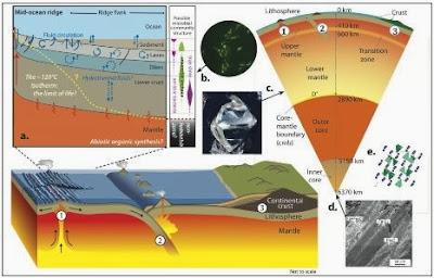 Contoh makalah tentang Minyak bumi dan manfaatnya