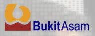 PT.BUKIT ASAM (PERSERO),Tbk