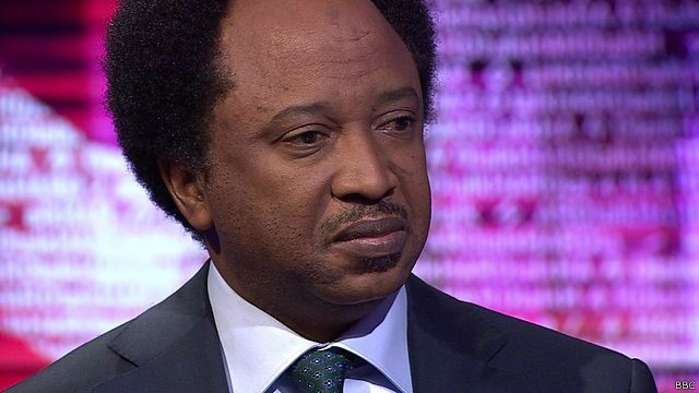 Although I support Buhari, I'm not a sycophant – Sani