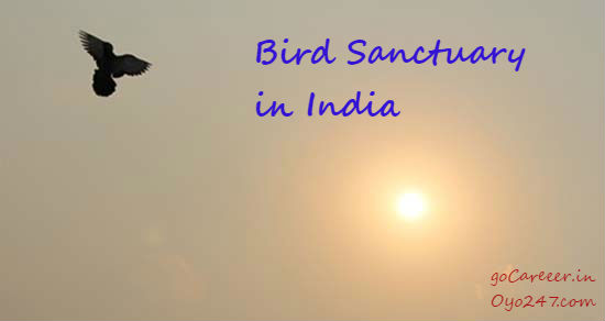 List of Important Bird Sanctuary in India (State wise)