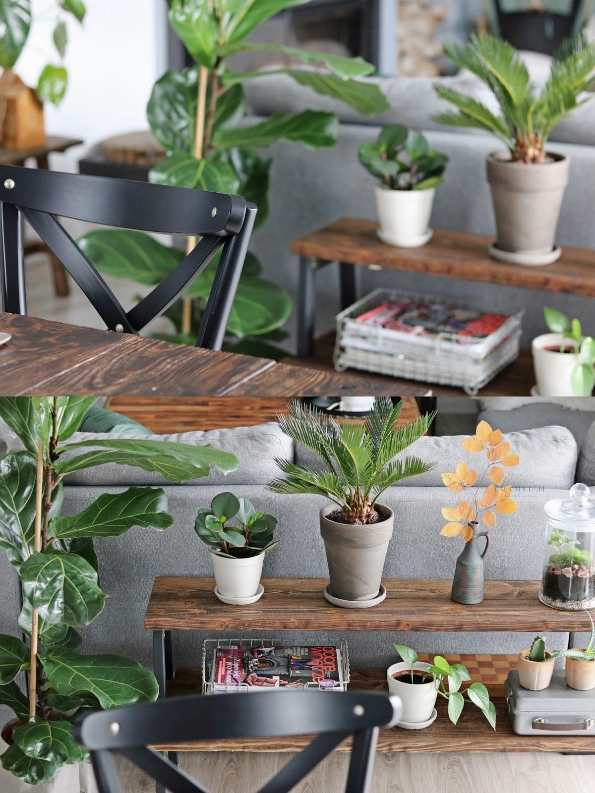 aranżacje wnętrz, baba ma dom, babamadom, deski, DIY, doityourself, drewno, featured, hacks, jesień, kwietnik, natura, opalany, poducha, salon, sofa, stół, zrób to sam,
