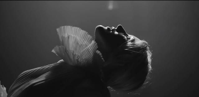 Video: Ellie Goulding - Flux