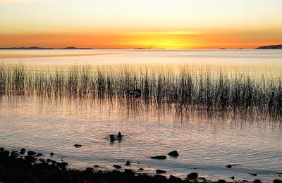 areas protegidas Peru, lago Titicaca Puno