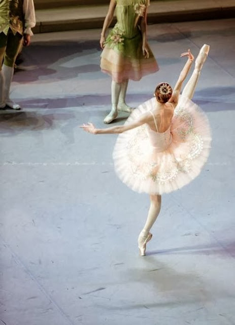 Svetlana Zakharova with the Mikhailovsky Ballet