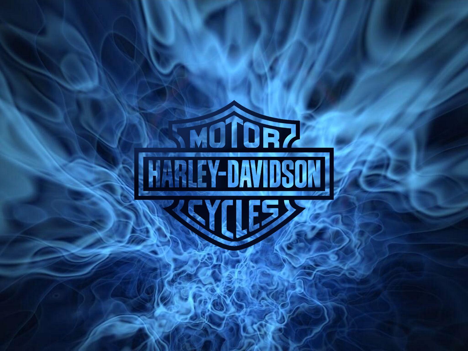 Harley Davidson Logo Clodo Sauvage