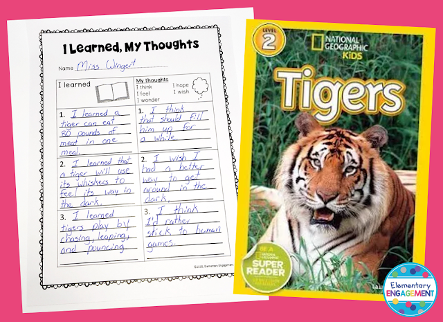 Tigers is a great nonfiction mentor text for thinking about reading.