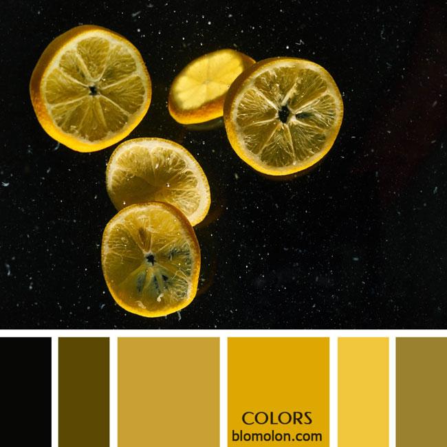variedad_en_color_paletas_colores_1e