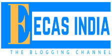 ECAS India - EveryCornerAStory.com | Puneet Bawa