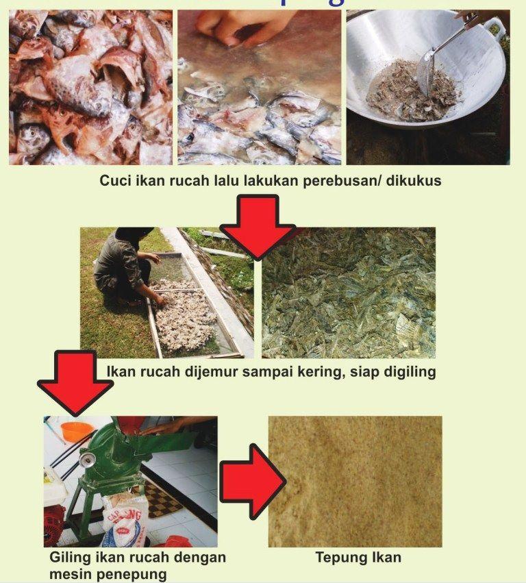 cara membuat pelet ikan nila untuk mancing