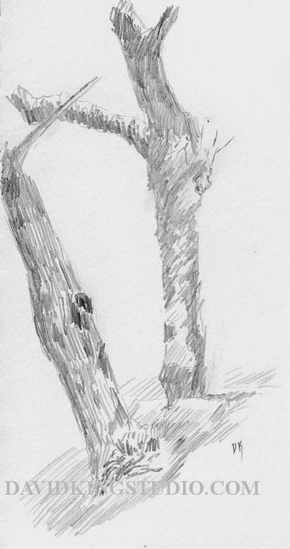 art sketch plein air pencil graphite tree trunk winter