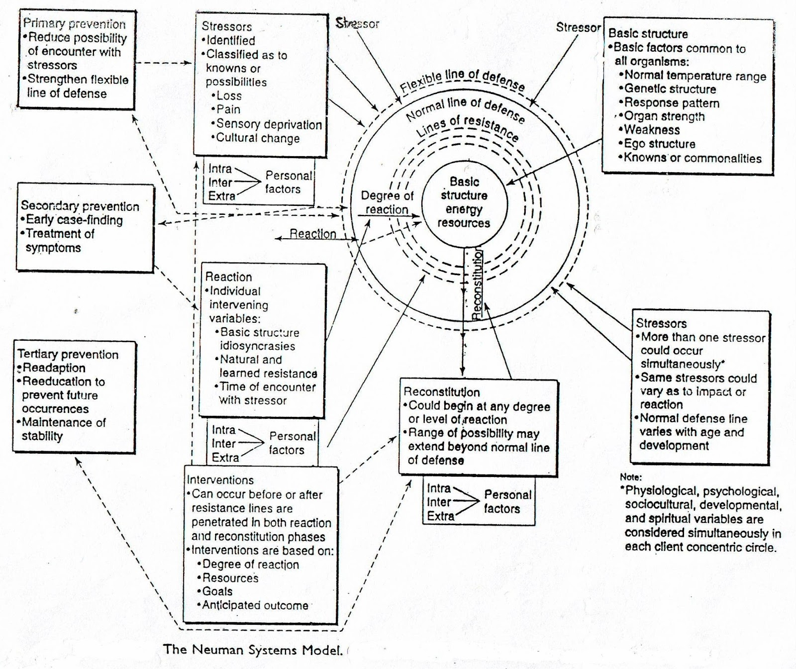 betty neuman systems model essay Betty neuman - nursing theorist it was classified as a systems model, and was titled the betty neuman health-care on the life on betty neuman: betty neuman.