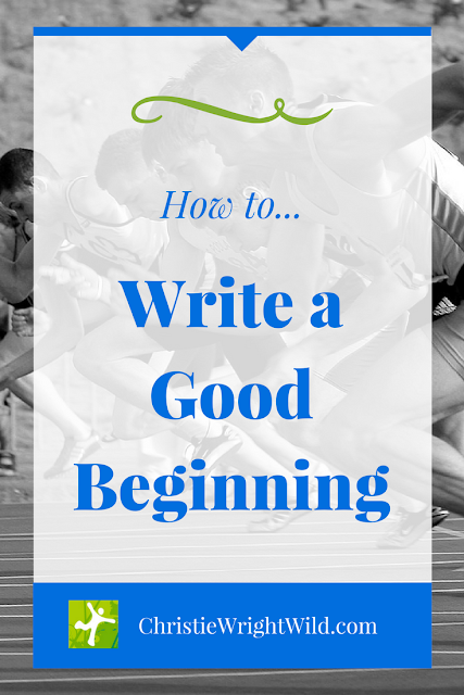 how to write a great beginning || writing a good beginning | story beginnings | opening lines of picture books | great novel openers | different ways to start a story