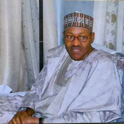 Former Provost Marshal of the Nigerian Army, Brigadier-General Idada Ikponmwen (retd), yesterday took a swipe at President Muhammadu Buhari's claims that the system was slowing down his anti-corruption drive and implementation of his policies.