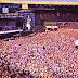 Brian May quer novo Live Aid contra aquecimento global