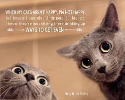 cat quotes when my cats rent happy.