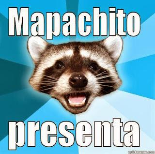 raccoon meme mapache