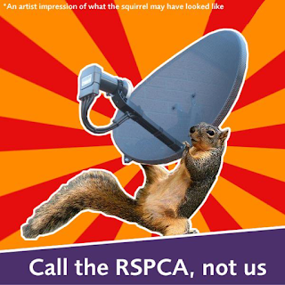 Poster encouraging citizens to call the RSPCA