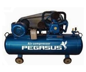 Máy nén khí Pegasus TM-W-0.36/8-180L