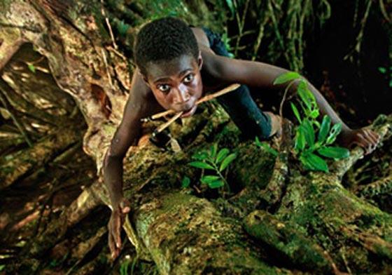"""شاب هندي يتسلق شجرة بسرعة فائقة تفوق مهارة """"فتى الأدغال"""""""