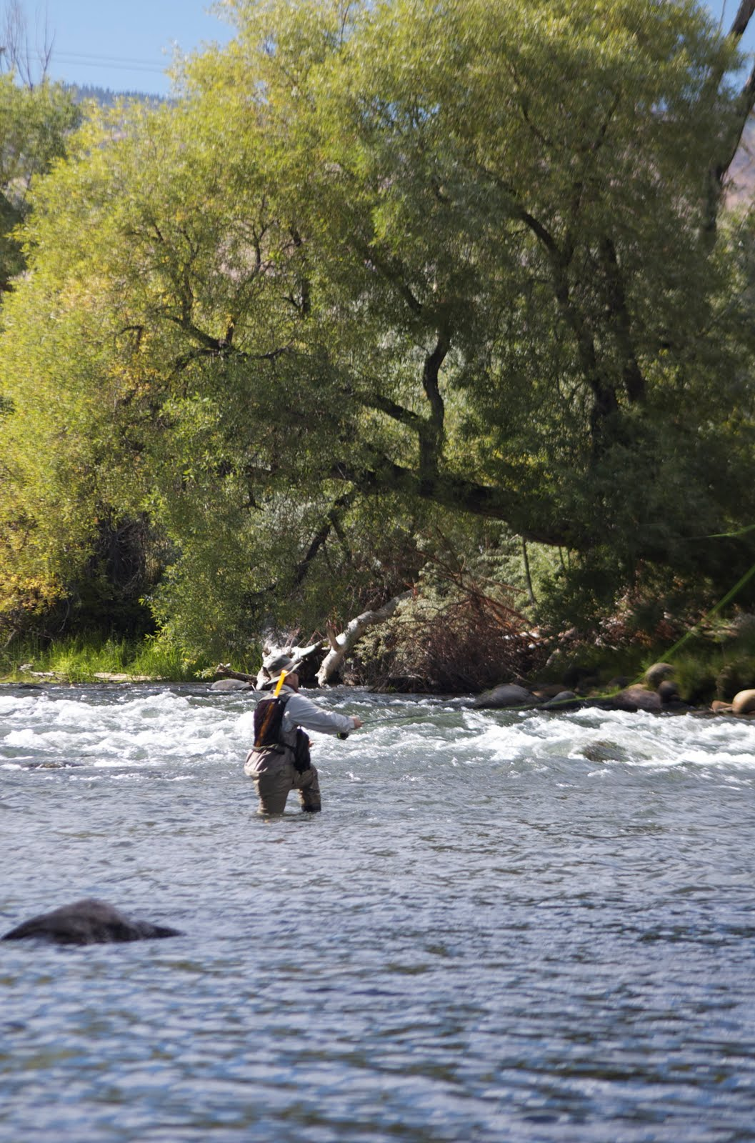 Reno Truckee River Watershed