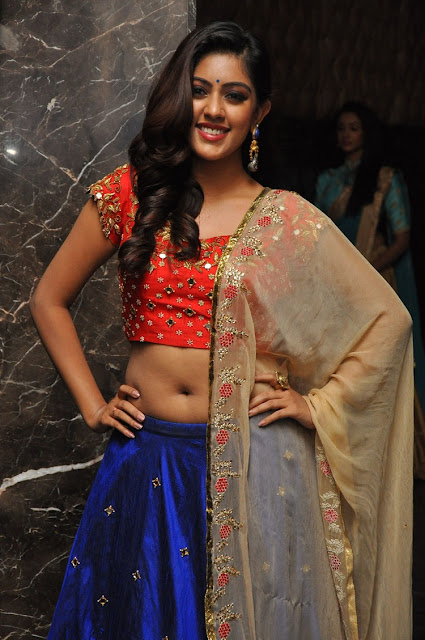 Anu emmanuel stills at Majnu movie audio launch