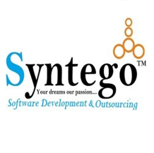 syntego job opening pune