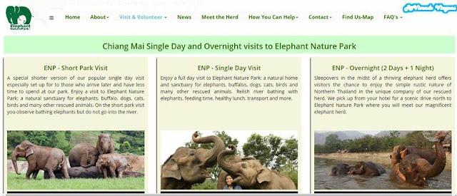 Como visitar o Elephant Nature Park