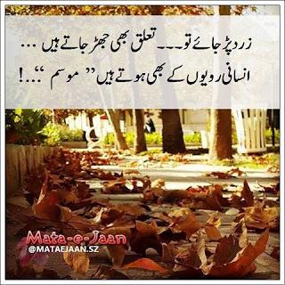 21751482 1960070300932733 8367576931342105686 n - Shair Jo Dil Mein Utar Gaya Ho....!