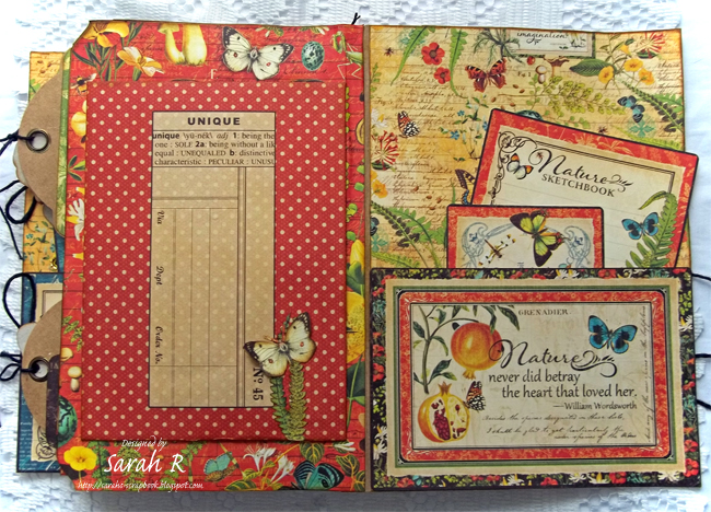 Scattered Pictures and Memories: Nature Sketchbook Folio