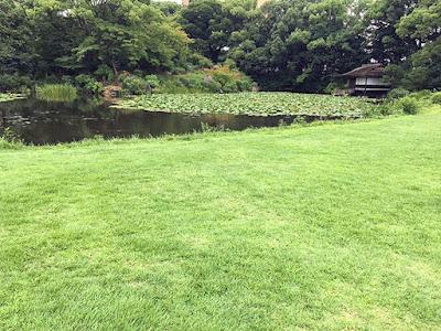 名勝渉成園 枳殻邸