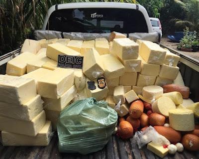 Adapec apreende 660 kg de queijo podre, em Araguatins