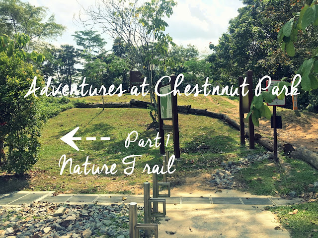 Nature Trail in Chestnut Park