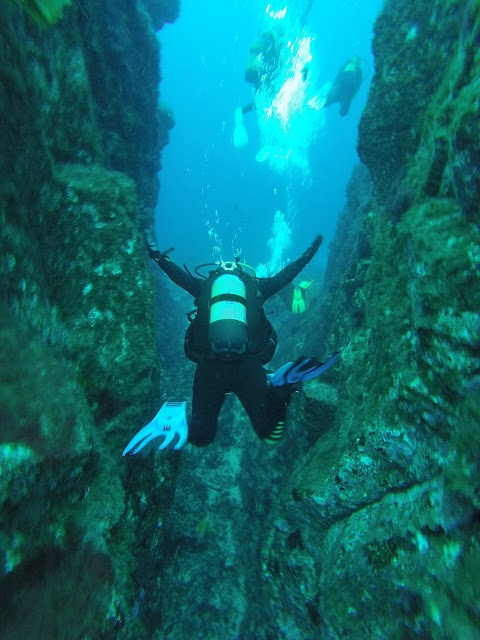 Photo by Ellis scuba diving on El Hierro, Canary Islands