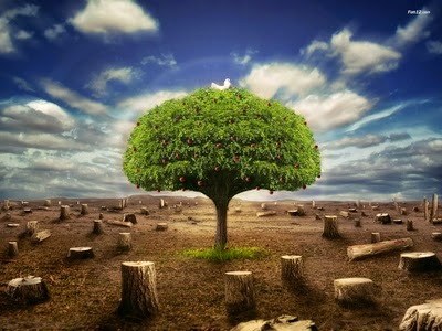 Prospek Kerja Lulusan Teknik Industri Perkuliahan Dan Prospek Kerja Jurusan Teknik Mesin Only When The Last Tree Has Died The Last Water Has Poisoned And The