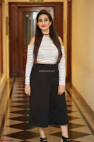 Manjusha in sleevelss crop top and black skirt at Darshakudu pre release ~  Exclusive Celebrities Galleries 118.JPG