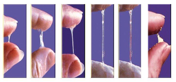 Health benefits of sperm