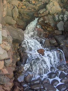 Jameos del Agua, Lanzarote by Susana Cabeza