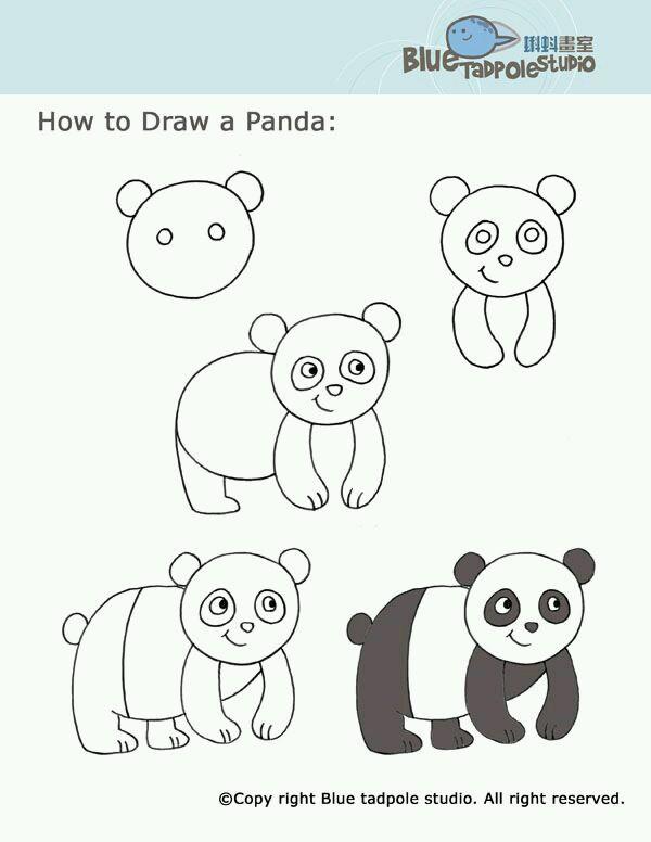 96 Gambar Kartun Hewan Yang Mudah Gratis Terbaik