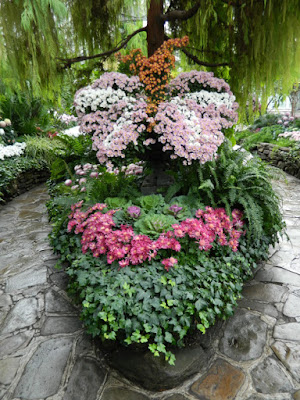 Chrysanthemum butterfly display at the Allan Gardens Conservatory 2015 Chrysanthemum Show by garden muses-not another Toronto gardening blog