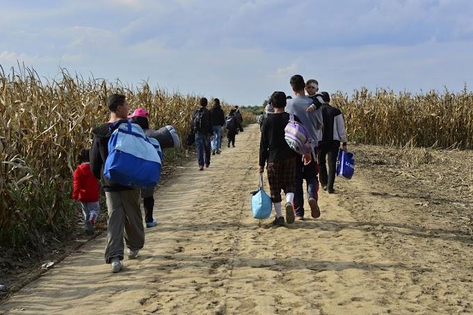 Avramopulosz: kiszámítható mechanizmusra van szükség a kimentett migránsok partra szállításában