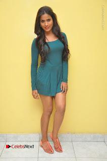 Telugu Actress Prasanthi Stills in Green Short Dress at Swachh Hyderabad Cricket Press Meet  0120.JPG